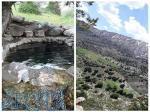 تورگروهی یکروزه منطقه حفاظت شده قرچغه