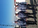 موسسه خدمات حفاظتی و مراقبتی تلاشگران نظم گستر پارس