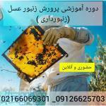 کارگاه آموزش عملی پرورش زنبور عسل وزنبورداری