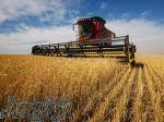 تأمین مستقیم اقلام کشاورزی از کشور قزاقستان