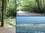 تور طبیعتگردی و بکر جنگل گیسوم
