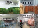 مشاوره، فروش و ساخت سردخانه در مازندران