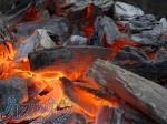 شرکت بزرگ پخش زغال کومیر