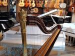 دنیای ساز فروش و ارسال انواع ساز و آلات موسیقی