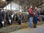 دوره آموزشی پرواربندی گوساله