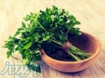 اعطای نمایندگی فروش سبزی و صیفی در سراسر ایران