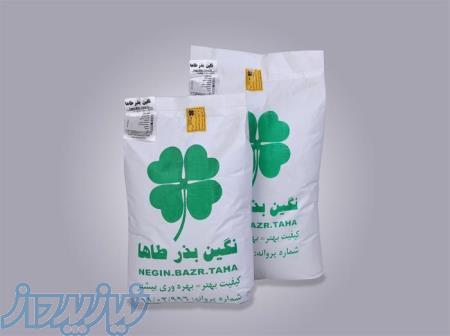 فروش بذر یونجه سردسیری ،بذر یونجه معتدل و گرمسیری