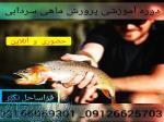 دوره آموزشی پرورش ماهی - پرورش ماهی گرمابی و ماهی سردابی