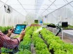 دوره آموزشی طراحی سازه گلخانه