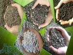 کود ورمی کمپوست و خاک برگ چیکال - چیکال کود