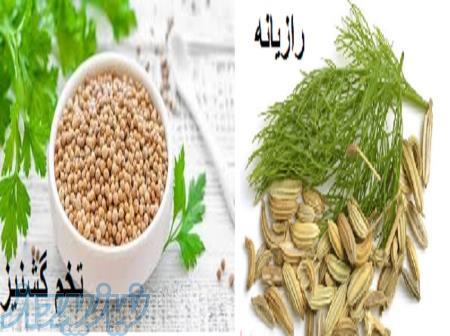 خرید و فروش رازیانه و تخم گشنیز در همدان