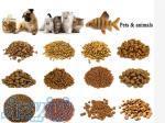 فروش خط تولید غذای خشک وکنسروی حیوانات خانگی
