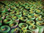 بزرگترین تولید کننده شیلنگ و پلاستیک