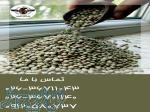بزرگترین مرکز پخش عمده حبوبات و خشکبار