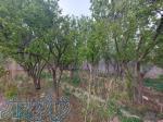 400 متر باغچه با سند تک برگ شهرک ملارد ویلای جنوبی
