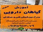 آموزش ماساژ در اصفهان