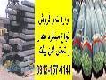 واردات وفروش انواع میلگرد آجدار A3 و شمش آهن