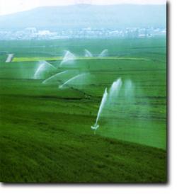 فروش زمین در سهیلیه کرج