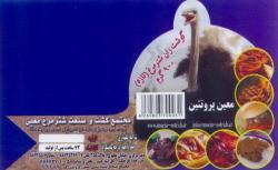 مجتمع کشت و صنعت شتر مرغ معین - تهران