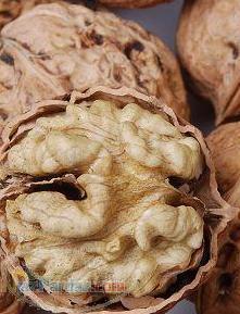 خرید و فروش انواع خشکبار مغز گردو پسته بادام و