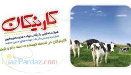 تهیه و توزیع نهاده های دامداری و مرغداری