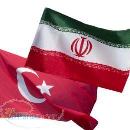 مترجم و مدرس ترکی استانبولی