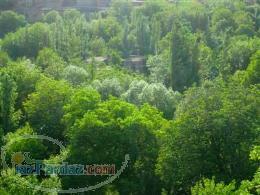 فروش تعداد محدودی زمین و باغ در هشتگرد