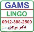 تدریس خصوصی نرم افزار های لینگو و گمز Gams Lingo