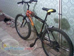 فروش دوچرخه پوما ساده