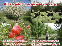 فروش باغ میوه