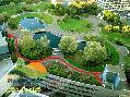باغ بام محوطه سازی احداث فضای سبز (گیاه وزندگی) مشهد
