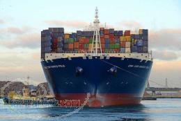 واردات و عرضه مواد اولیه شیمیایی خوراکی و صنعتی