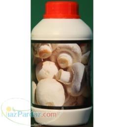 مکمل تقویتی قارچ نانو (دکمه ای - صدفی )
