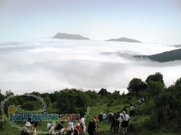 تور های مسافرتی اجرای تور جنگل ابر و