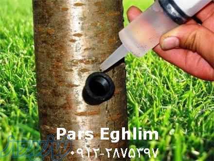 تزریق مستقیم مواد مغذی (کود) به تنه درخت