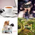 دانلود رایگان تصاویر Shutterstock