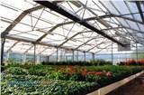 برترین سیستم گرمایش تابشی گلخانه ها