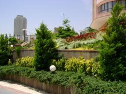 خدمات فضای سبزوطراحی محوطه پارسیان  - تهران