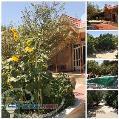 فروش 3000 متر باغ ویلا در شهريار کد MJ 1401