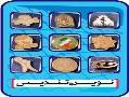 بج نشان سینه بج سینه مدال شیلد گل سینه  - تهران
