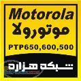 فروش ويژه موتورولا PTP600 - PTP 500 - PTP650