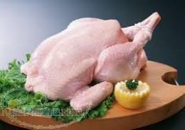 بازرگانی مرغ و آلایشات و فرآورده های مرغ