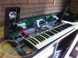 نمایندگی رسمی و مرکزی فروش و خدمات پس از فروش کیبورد (ارگ ) و پیانوهای دیجیتال