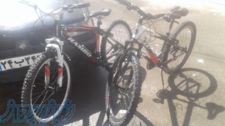 فروش فوری اکازیون زیرقیمت 2عدد دوچرخه کوهستان نو وکارکرده ویوا -رامبو