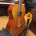 فروش گیتار ریموندو Raimundo 103M - سالار غلامی