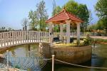 طراحی و اجرای باغ آتلیه
