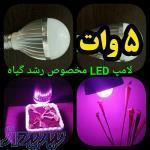 لامپ LED مناسب برای رشد گیاهان