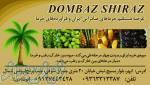 دمباز شیراز