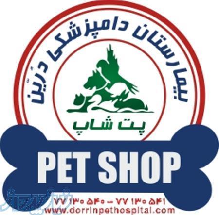 فروشگاه لوازم حیوانات وپت شاپ بیمارستان دامپزشکی درین