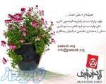 شرکت آریا خبره شریف(برنامه نویس)